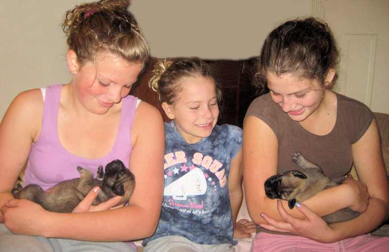 Megan, Jenna and Breanna (Compton girls) with new Mastiff Puppies