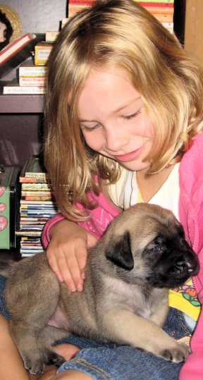 Jenna Compton with a mastiff puppy